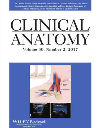 Clinical Anatomy Journal Choice Image - human anatomy diagram organs